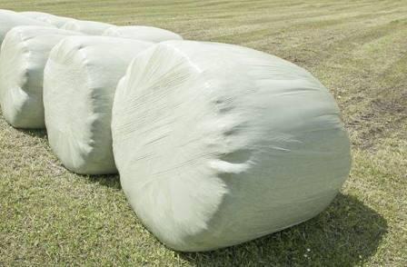 gras-siloballen