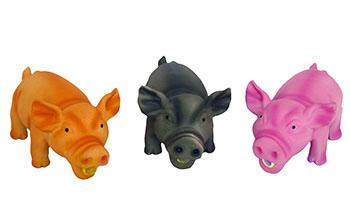 Schwein_grunzend