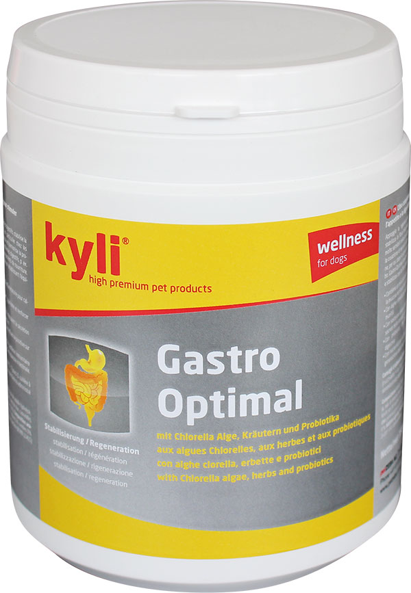 pulver_gastro-optimal
