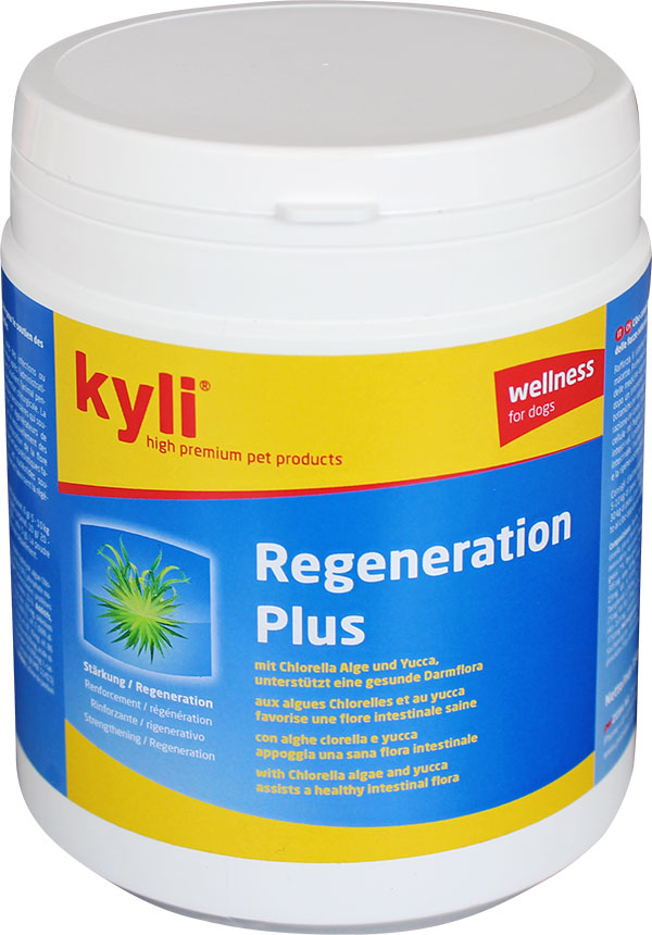 pulver_regeneration-plus